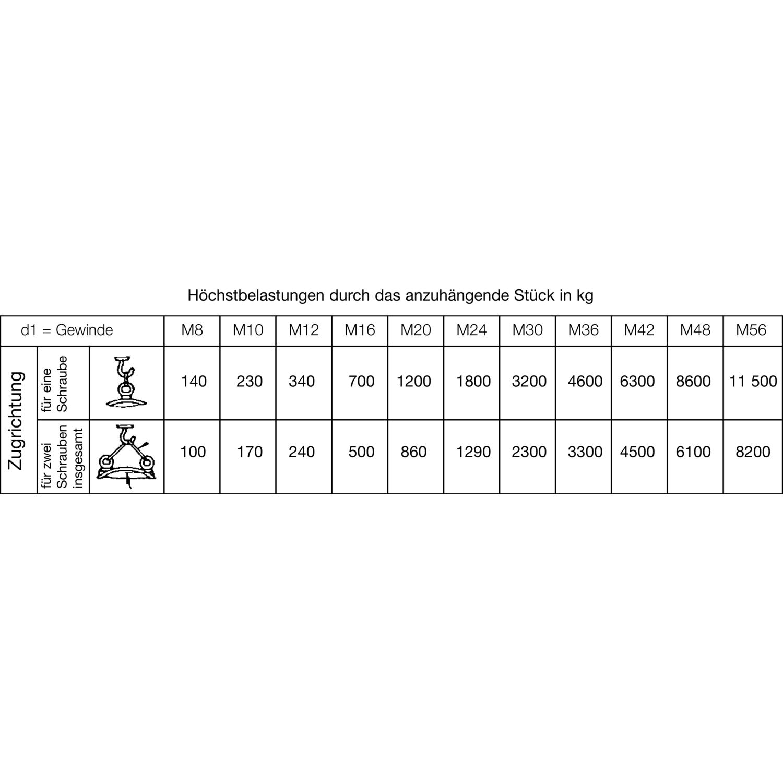 Ringschrauben Edelstahl A2 DIN 580 M16 x20