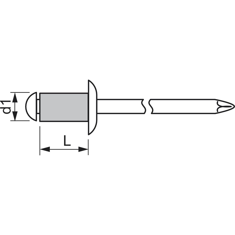 100 St Blindnieten Flachkopf  Aluminium mit Stahl Dorn 4 x 6 mm  NEU