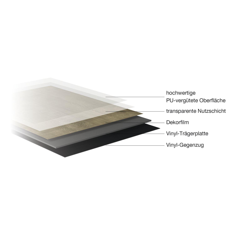 vinylboden klebesheets home line eiche fossil 2 mm. Black Bedroom Furniture Sets. Home Design Ideas